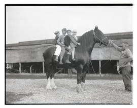 Four children on draft horse