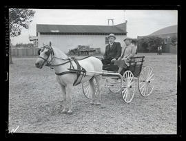 Mr. and Mrs. McCleave in horse-drawn wagon
