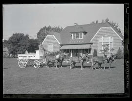 Man on horse-drawn wagon