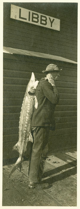 Man at depot with white sturgeon form Kootenai River.