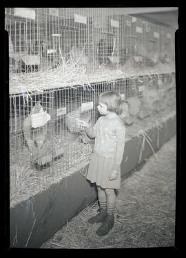 Girl looking at chickens in cages