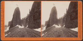 """'The Needles,' Cascades, Columbia River, Oregon"" (Stereograph E31)"