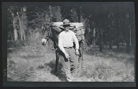 Man with pack mule