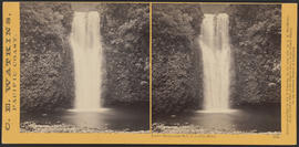 """Lower Multnomah Fall, Columbia River."" (Stereograph 1240)"