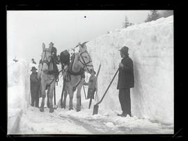 Crews and mules clearing snow on Columbia River Highway?