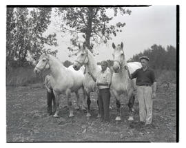 Three people posing with horses