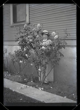 Unidentified woman with rose bush