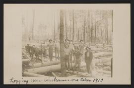 Logging near Clackamas, Oregon