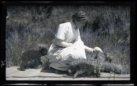 Irene Finley feeding a bear cub and cougar kittens