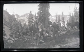 Men and packhorses in camp