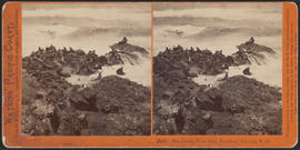 """Sea Lions, West End, Farallone Islands, P. O."" (Stereograph 2043)"