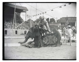 Rex Oregonus dismounting from elephant