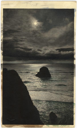 """Moonlight from Bird Rocks"""