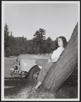 Model Leaning on Tree