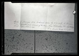 Handwritten note by L. A. Larsen, describing sighting of strange sea animal