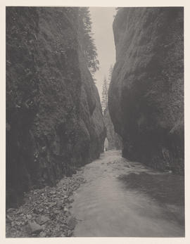 Oneonta Gorge Looking In