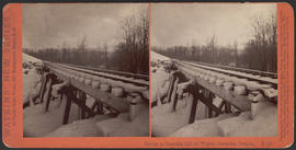 """Bridge at Oneonta Fall in Winter, Cascades, Oregon"" (Stereograph E41)"