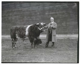O. M. Plummer with Shorthorn bull