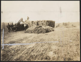 Baling hay in the Willamette Valley, Oregon