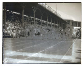 Runners racing in stadium
