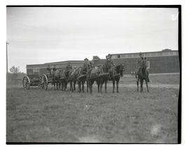 Horse artillery unit from Fort Lewis, Washington