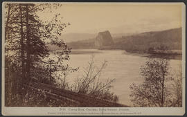 """D96. Castle Rock, Columbia River Scenery, Oregon."""