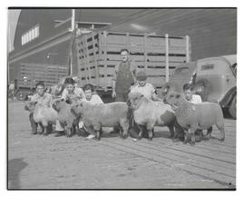 Young people with prize-winning sheep at 1935 Pacific International Livestock Exposition