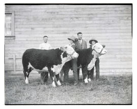 Two women with steers