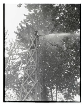 Worker from Singer's Spraying Service treating trees at Jantzen Beach Amusement Park, Portland