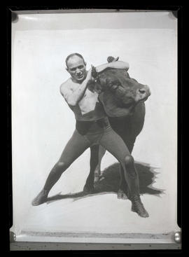 Photograph of man wrestling steer