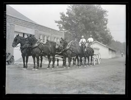 Team of horses hitched to wagon