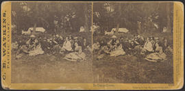 """In Camp Grove, Yosemite Valley, Mariposa County, Cal."" (Stereograph 1043)"
