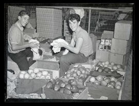 Two unidentified boys cleaning fruit, probably at probably at Pacific International Livestock Exp...