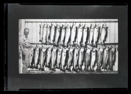 Photograph of man and fish