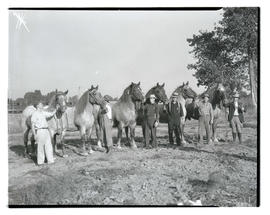 Men posing with horses