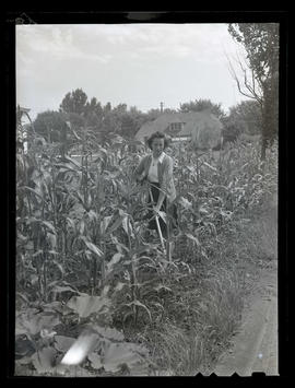 Woman in corn patch