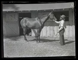 Man and horse outside stable