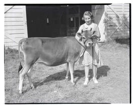 Girl and heifer