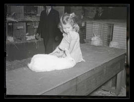 Unidentified young girl with rabbit, probably at Pacific International Livestock Exposition
