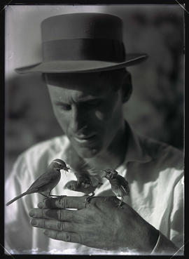 William L. Finley Holding Desert Sparrows