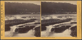 """The Willamette Falls, Oregon."" (Stereograph 1219)"