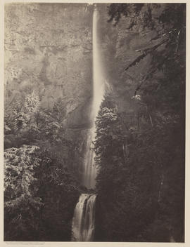 """Multnomah Falls. Columbia River."" (Mammoth 422)"