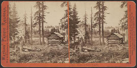 """Scene at Lake Angela, Altitude 7,300 feet"" (Stereograph 114)"