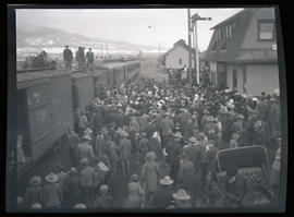 Crowd viewing elk loaded in a boxcar