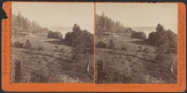 """View on the Columbia River, near Vancouver."" (Stereograph 1226)"
