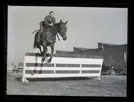 Horse and rider jumping over obstacle, probably at Pacific International Livestock Exposition
