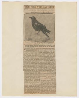 Articles discussing ravens and turkey vultures in Oregon