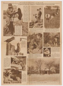 Newspaper feature on Finley's films (Kansas City) Newspaper feature on Finley's films (Kansas Cit...